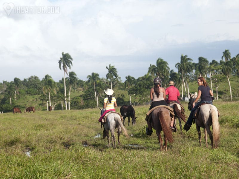 Riding horses in the countryside