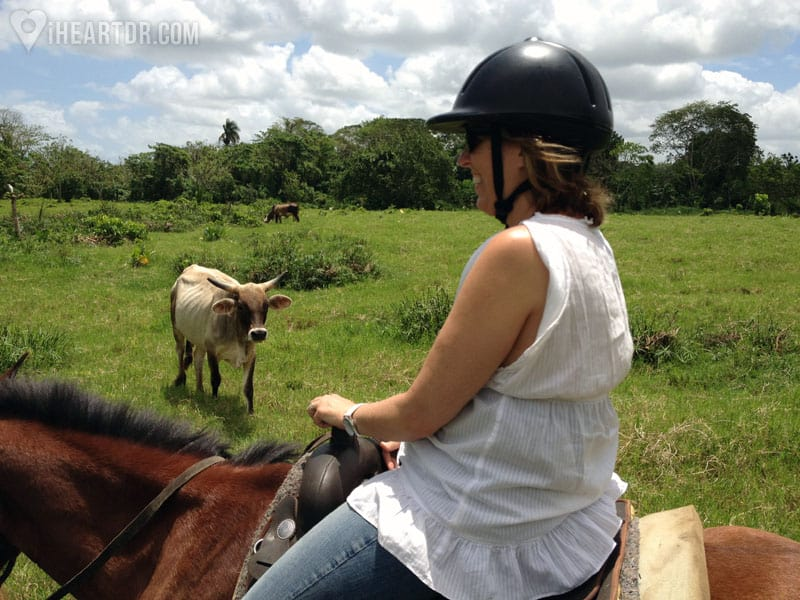 Woman horseback riding with a bull in the background