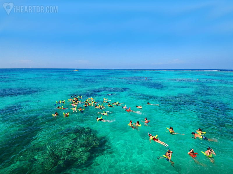 Group snorkeling in the sea seen from the air