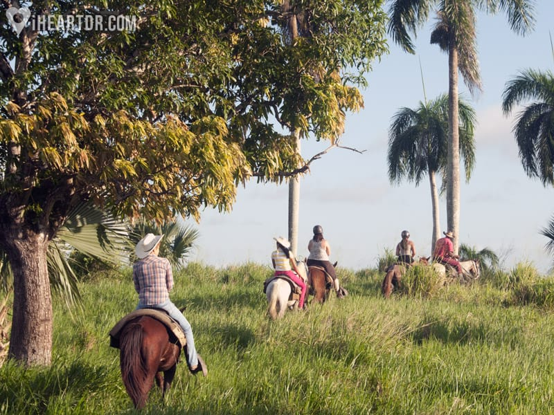 Horseback riding on the countryside