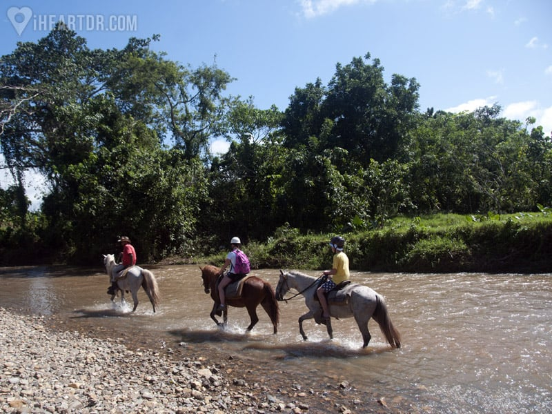 Riding the horses on the river