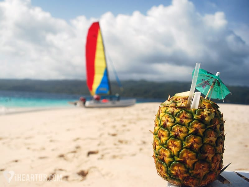 Pineapple in the foreground with the beach and catamaran in the background