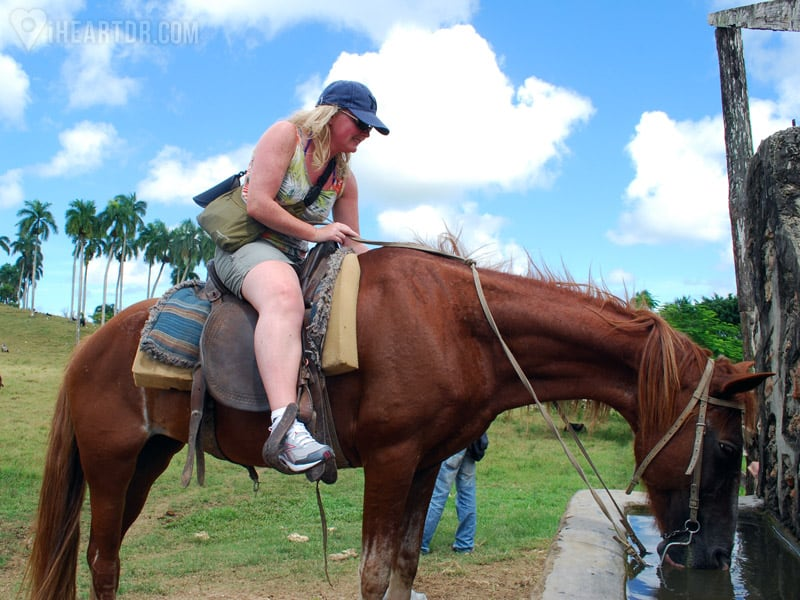 Woman letting her horse drink some water
