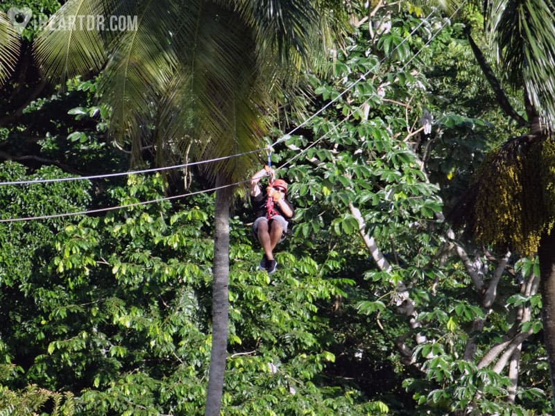 Man riding the zip line among the trees