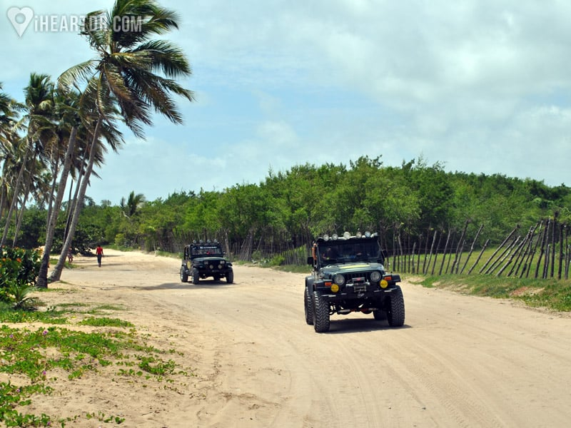 Jeeps on a dirt road
